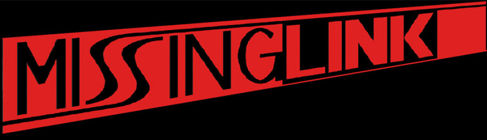 Missing-Link | Die Coverband aus dem Raum Ludwigsburg